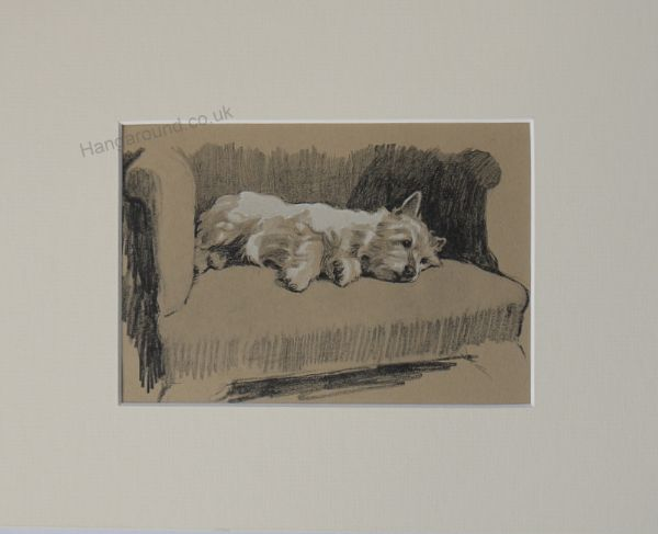 Westie  lying on a chair Wes A3 1930's print by Cecil Aldin